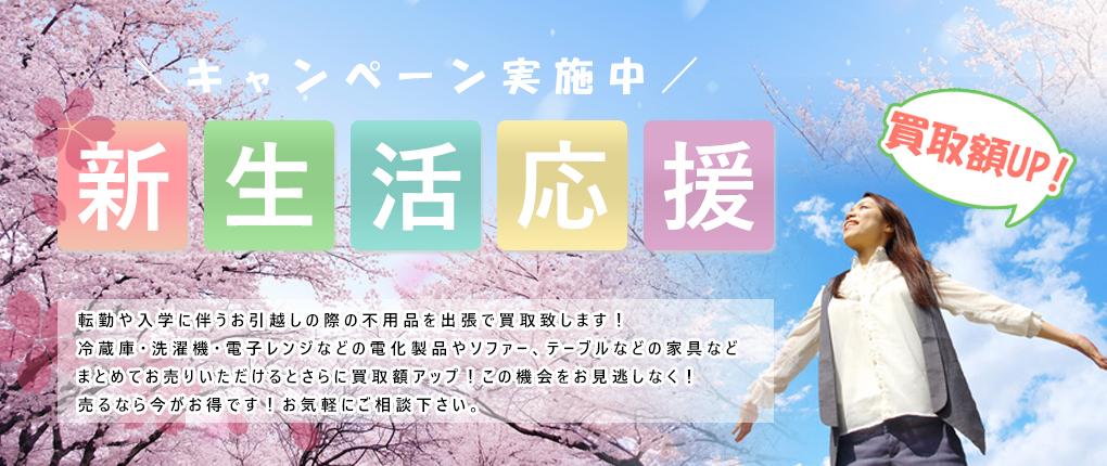 campaign_haru